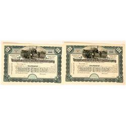 Tonopah & Goldfield Railroad Company Blank Stocks (2 Copies)  #110677