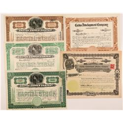 "Arizona ""Cactus"" Mining Company Stock Certificates  #104285"