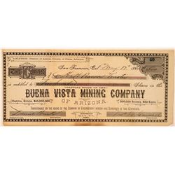 Buena Vista Mining Co. of Arizona Stock Certificate  #107746