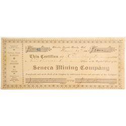 Seneca Mining Company Stock, Badger Hill Mining District, Nevada County  #79224