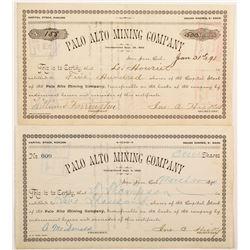 Palo Alto Mining Company Stocks (2)  #90424