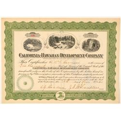 California-Hawaiian Development Co. Stock Certificate  #101545