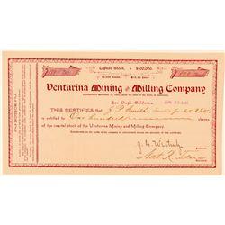 Venturina Mining & Milling Company Stock Certificate  #100838