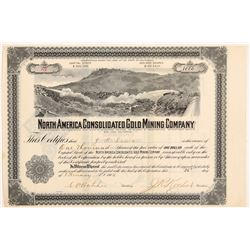 North America Consolidated Gold Mining Co. Stock Certificate  #107217