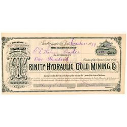 Trinity Hydraulic Gold Mining Co. Stock Certificate  #100844