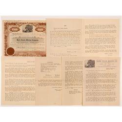 Mark Twain Mining Company Stock Certificate & Ephemera  #107145