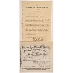 Tuolumne Gold Mining Co., Ltd. Stock Certificate & Bond  #104405