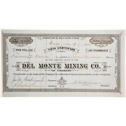 Del Monte Mining Company of Colorado Stock  #89464