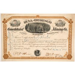 Bull-Domingo Consolidated Mining Company of Colorado  Stock  #86723