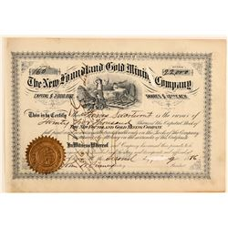 New Foundland Gold Mining Company Stock Certificate  #91803