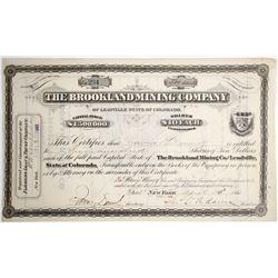 Brookland Mining Stock Certificate  #64017