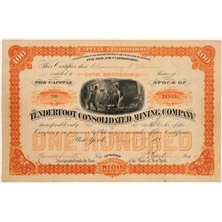 Tenderfoot Cons. Mining Company Stock Certificate  #104329