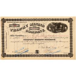 Trophy Mining Company Stock Certificate  #104331