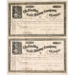Findley Gold Mining Co of Georgia Stocks (2)  #85627