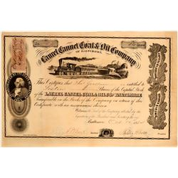 Laurel Cannal Coal and Oil Company of Baltimore Stock  #109055