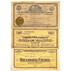 """Brunswick"" Comstock Mining Stock Certificates  #102188"