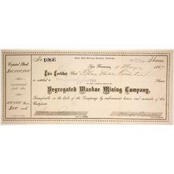 Segregated Washoe Mining Company  #86503