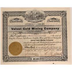 Velvet Gold Mining Co. Stock, Goldfield, Nevada  #110049