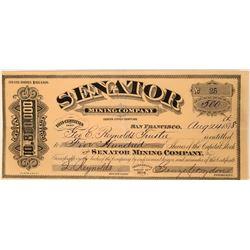 Senator Mining Company Stock, Storey County, Nevada, 1878- Rare  #110134