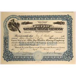 Blue Jay Wonder Mining Co. Stock, Nevada, 1907  #110074