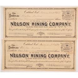 Nelson Mining Company Stocks  #86164