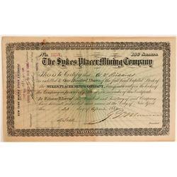 Sykes Creek Placer MC stock, 1880  #110193