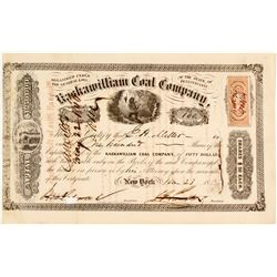 Kaskawilliam Coal Company Stock  #81663