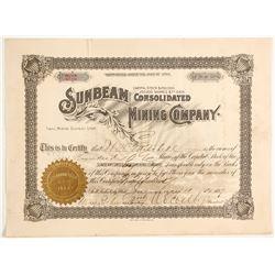 Sunbeam Consolidated Mining Company stock  #88054