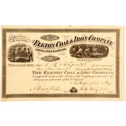Elkton Coal & Iron Company Stock  #81919