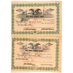 Wall, Nichols Company Ltd. Stock Certificates  #107291