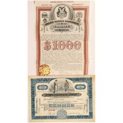 Michigan Water Bond & Stock Certificate  #104208