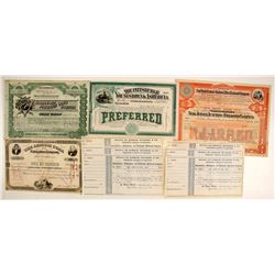 Stock Certs. (4) & Unissued Checks  #86830