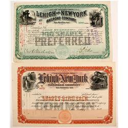 Lehigh and New York Railroad Stocks (2)  #84968
