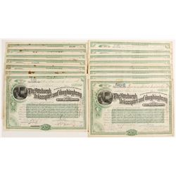 The Pittsburgh, McKeesport and Youghiogheny Railroad Company Stock Certificates  #80533