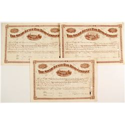 The Sixth Avenue Railroad Company Stock Certificates  #80539
