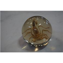 SCORPION IN LUCITE SPHERE