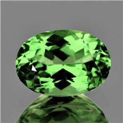 Natural Green Tsavorite Garnet 6.5x5 MM {Flawless-VVS}