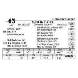 Lot  43 - MCD Dr J 8153
