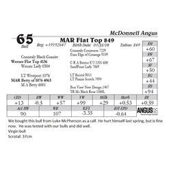 Lot  65 - MAR Flat Top 849