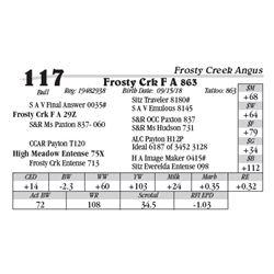 Lot  117 - Frosty Crk F A 863