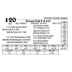 Lot  120 - Frosty Crk F A 873