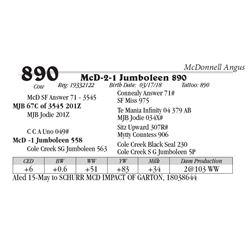 Lot  890 - McD-2-1 Jumboleen 890