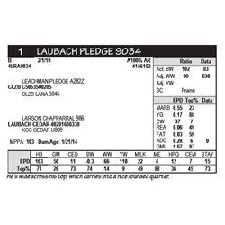 LAUBACH PLEDGE 9034