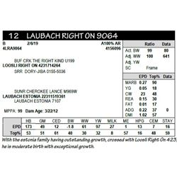 LAUBACH RIGHT ON 9064