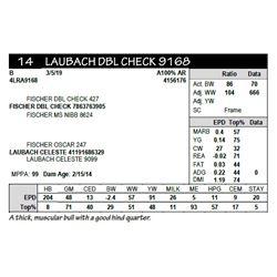 LAUBACH DBL CHECK 9168