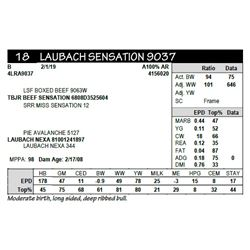 LAUBACH SENSATION 9037