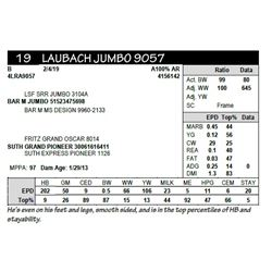 LAUBACH JUMBO 9057