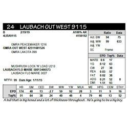 LAUBACH OUTWEST 9115