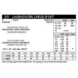LAUBACH DBL CHECK 9187