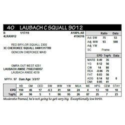LAUBACH C SQUALL 9012
